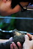 木柵動物園外拍:IMG_3340.JPG