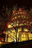 淡水天元宮夜拍:IMG_0756.JPG