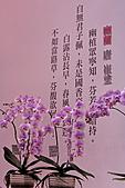 2011台北國際蘭展:IMG_2827.JPG