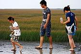 高美濕地:IMG_5972.JPG