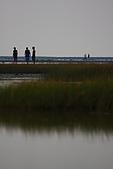 高美濕地:IMG_5988.JPG
