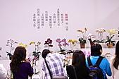 2011台北國際蘭展:IMG_2831.JPG