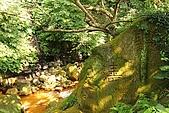 天母磺溪水石之美:IMG_3781