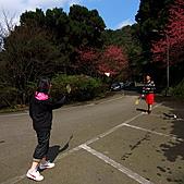 大尖山賞櫻:IMG_0683.JPG