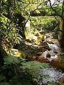 天母磺溪水石之美:IMG_3784