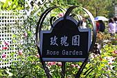 士林官邸玫瑰:IMG_2097.JPG