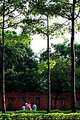 成大榕園:IMG_0474.JPG