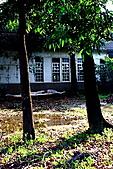成大榕園:IMG_0476.JPG