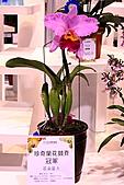 2011台北國際蘭展:IMG_2849.JPG