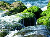 石門老梅。綠石槽:DSC00336.JPG