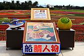 三仙台花海:IMG_6734.JPG