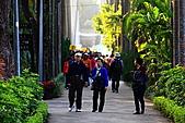 菊宴。台北城:IMG_8607.JPG