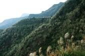 金瓜石黃金瀑布:IMG_8921