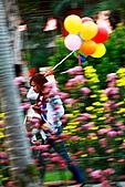菊宴。台北城:IMG_8669.JPG