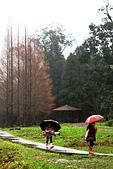 福山植物園的溼意:IMG_9726.JPG
