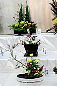 菊宴。台北城:IMG_8740.JPG