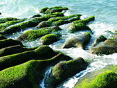 石門老梅。綠石槽:DSC00297.JPG