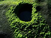 石門老梅。綠石槽:DSC00361.JPG