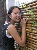 赤柯山:竹皮