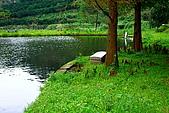 擔水窩濕地農場:IMG_1465.JPG