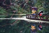 福山植物園的溼意:IMG_9785.JPG