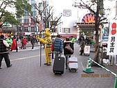 2008東京跨年:老虎好瘦長