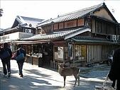 2007日本行(五):