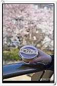 2009.04.03 東京賞櫻day7:DSC_0202.jpg