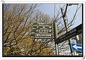 2009.04.03 東京賞櫻day7:DSC_0210.jpg