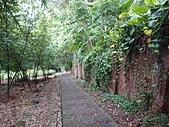 長腳登山隊的快樂行腳之下竹林步道.天母山步道.下東勢產業道路連走  20200809: