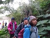 長腳登山隊的快樂行腳之新北市貢寮區和美山行腳(未竟) 20160131: