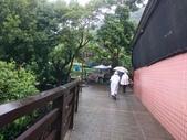 長腳登山隊的快樂行腳之楓櫃斗湖登山步道登硬漢嶺20170903: