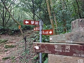 長腳登山隊的快樂行腳之汐止新山.夢湖登山步道 20200308: