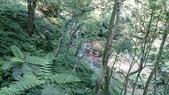 長腳登山隊的快樂行腳之汐止茄苳古道順登四分尾山行腳 2014/08/31: