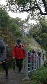 長腳登山隊的快樂行腳之翠山步道+碧溪步道+大崙頭尾親山步道:循序繼續往前囉…