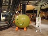二十世紀梨博物館(日本鳥取縣倉吉市)  20171112: