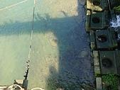 長腳登山隊的快樂行腳之坪林親水步道.𩻸魚堀溪觀魚步道 20200531:
