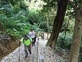 長腳登山隊的快樂行腳之三坑子步道.四腳亭步道連走 20200503: