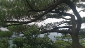 長腳登山隊的快樂行腳之如意湖+金明山+柯子林山連走20141019: