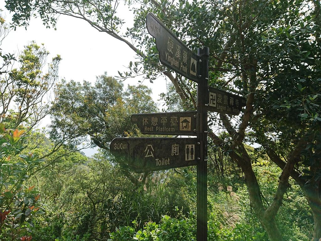 長腳登山隊的快樂行腳之楓櫃斗湖步道.硬漢嶺運補路.硬漢嶺步道.林梢步道連走  20180325: