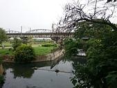 大樹舊鐵橋溼地教育園區 20161209: