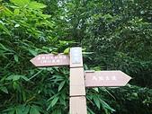 長腳登山隊的快樂行腳之新竹馬胎古道.南坪古道連走20200607: