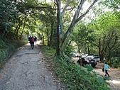 長腳登山隊的快樂行腳之三峽雲森瀑布步道 20190804: