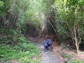 硬漢嶺步道 20171203:
