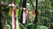 長腳登山隊的快樂行腳之坪林九芎根山健行 2014/06/22: