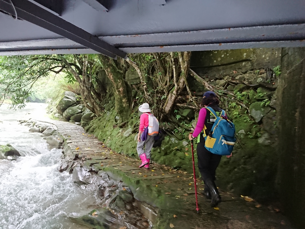 長腳登山隊的快樂行腳之石碇烏塗溪步道.  山羊洞登山步道  20171126: