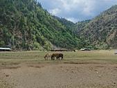 普達措國家公園.屬都湖(中國雲南省迪慶藏族自治州香格里拉市) 20190612: