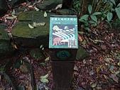 長腳登山隊的快樂行腳之魚路古道(上磺溪停車場-金包里大路城門) 20200223: