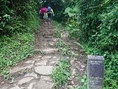 長腳登山隊的快樂行腳之頂山.石梯嶺步道 20210418: