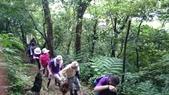 長腳登山隊的快樂行腳之三峽紫微聖母環山步道行腳 20150531: